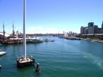 Darling Harbour looking north